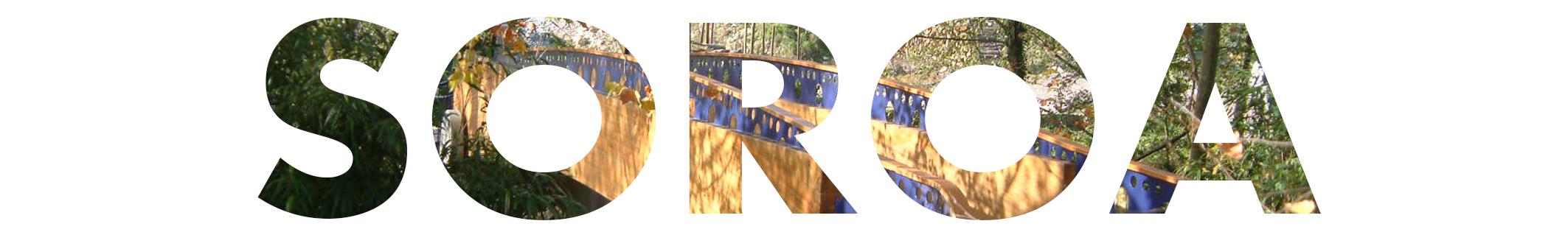imagen de entrada a la web soroa escrito con un fondo de un edificio